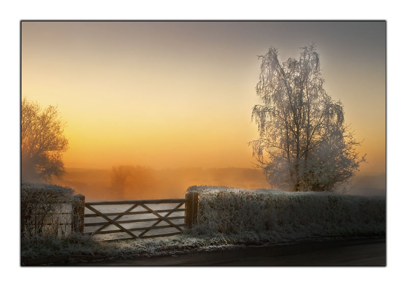 Frost Gate