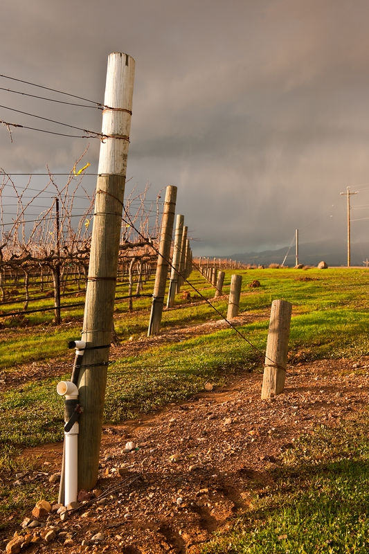 Livermore Valley, Clearing Storm