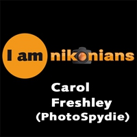 Carol Freshley (PhotoSpidie), joined Nikonians in 2011. Carol is a frequent poster to ask for opinions and to offer encouragement and advice in the Nikonians spirit. Enjoying retirement, traveling gives her the opportunity to use her camera daily, keeping her skills improving and improving. It is our pleasure to introduce her, showing some of her work.