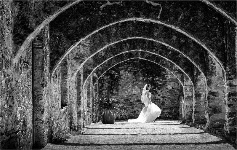 Surprise Bride