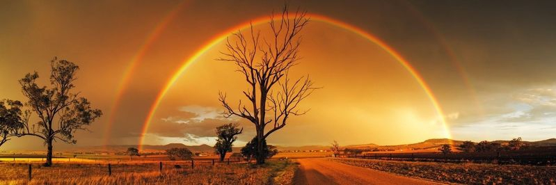 Melrose Rainbow