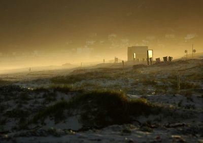 Golden light on the beach