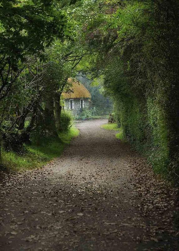 Bunratty Cottage Lane