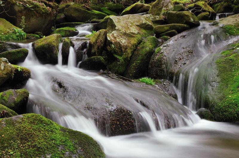 Falls in Roaring Fork