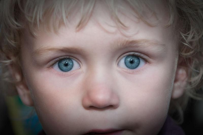 """Blue Eye """"Dead Pan"""" Stare"""