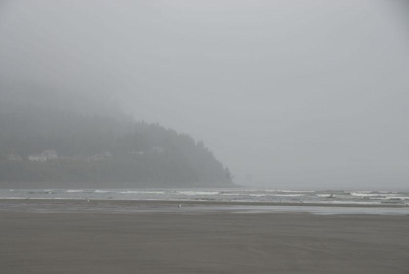 Beach Mist - Seaside Oregon