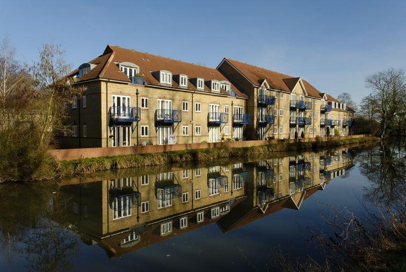 Riverside Reflections