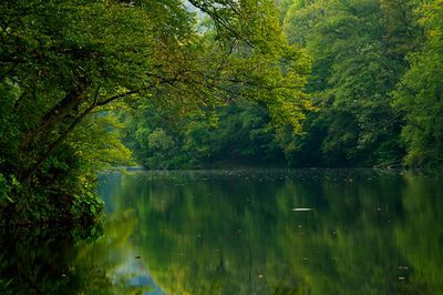 Hamory Lake