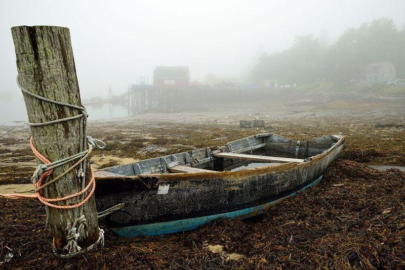Bad News Boat