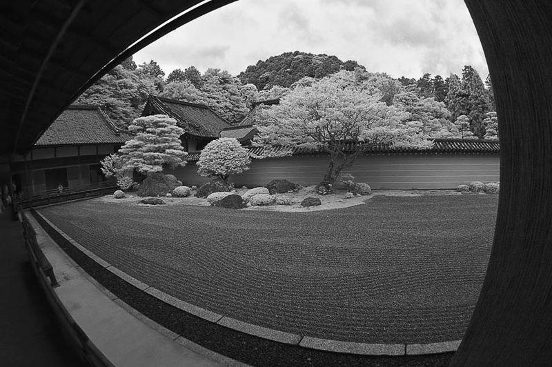 The Garden of Emptiness