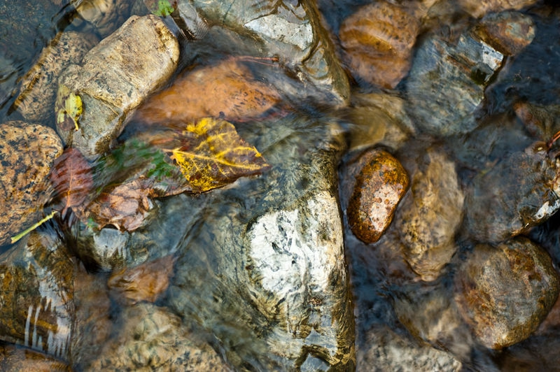 Rock in Stream