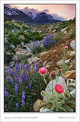 landscape sierra foo... (jlf)