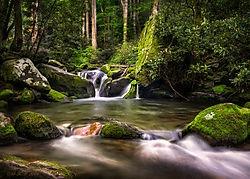 Roaring Fork Creek... /Bump57/