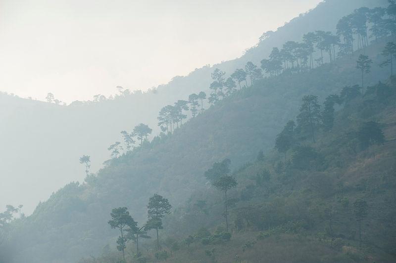 Guatemala countryside