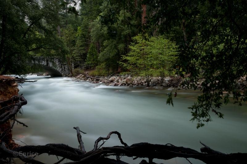 Enrico_Yosemite-501