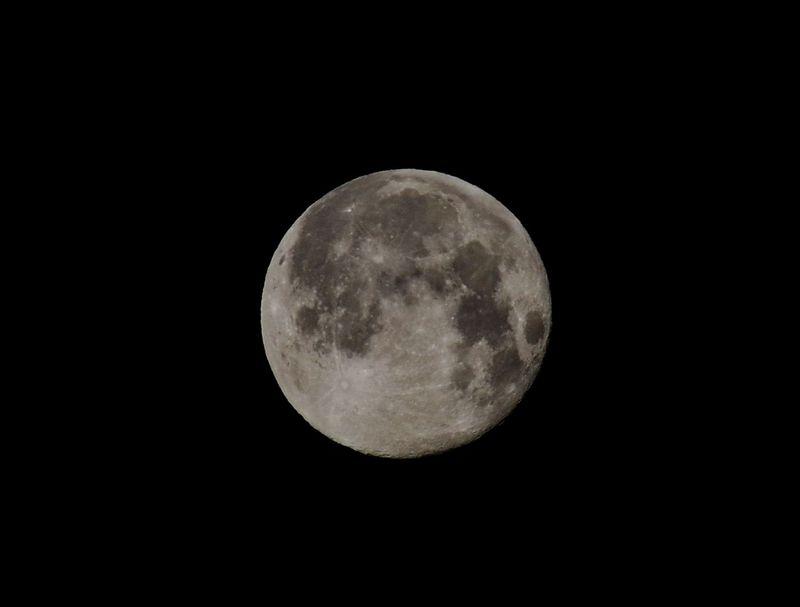 moon241