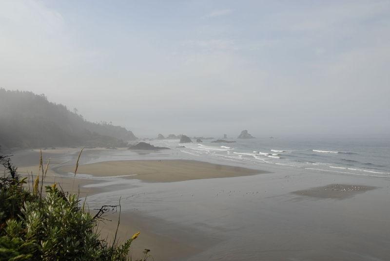 Beach - Tillamook  Head Trail, Seaside Oregon