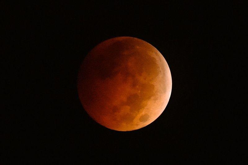 Blood Moon over Texas, 8Oct2014