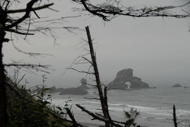 Oregon Coast - Tillamook Head Trail, Seaside Oregon