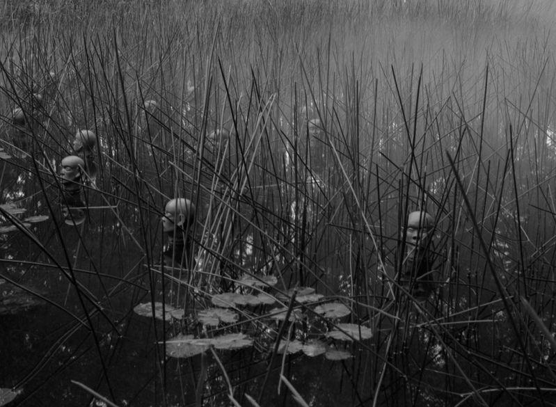 The_Mist_Garden.jpg