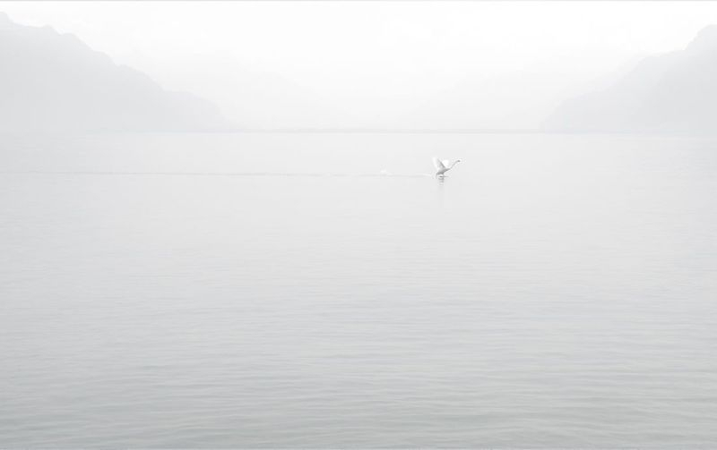 Minimalism - Simplicity