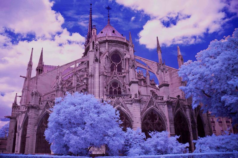 NOTRE_DAME_CATHEDRAL