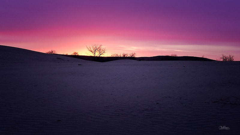 Great Sand Hills Sunrise