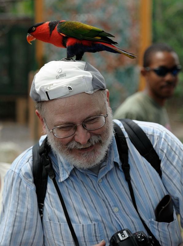 David get attacked in the Asdastra Gardens - Nassau Bahama's