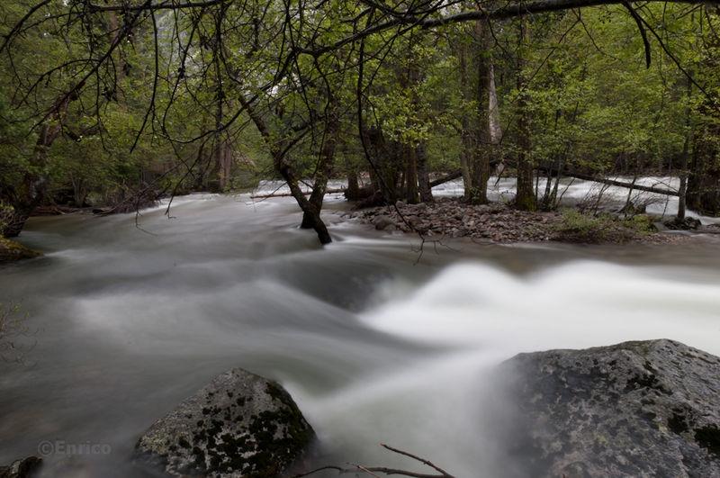 Enrico_Yosemite-521