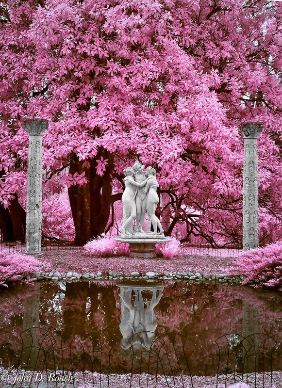The Tree Graces, Maymount, Richmond, Virginia