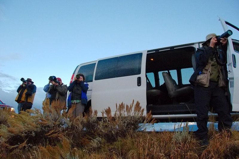 Van 1 saw a moose