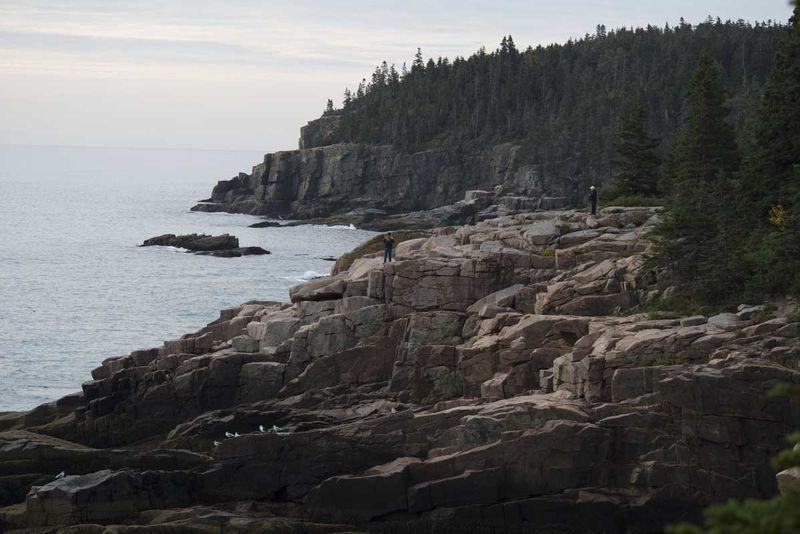 Ocean Path, Acadia National Park, Maine