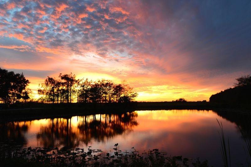 Everglades Winter Evening