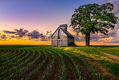 "Winner June Landscape Theme: ""Early and Late Sidelit Images w/o Sun""  ""Morton, IL Corn Crib""  D800 