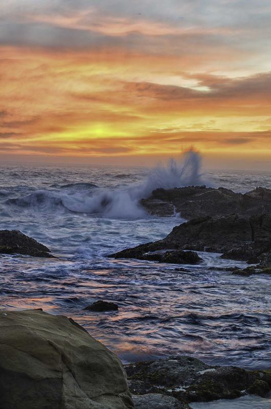Pt. Lobos Sunset