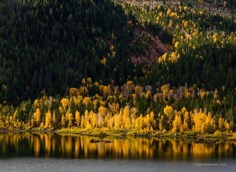 Slide Lake Aspens