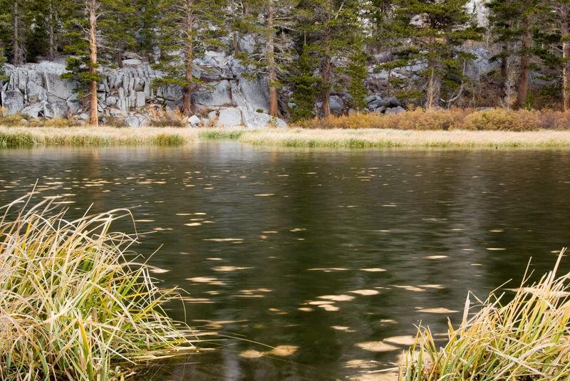 Wier Pond