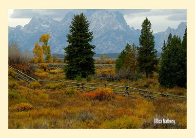 Fence Line In Autumn