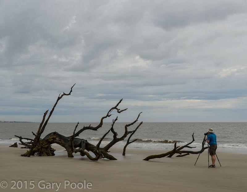 Erric Bowles at Driftwood Beach