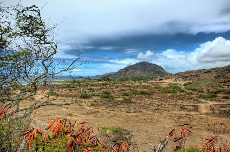 Koko Crater From the Makapu'u Point Trail