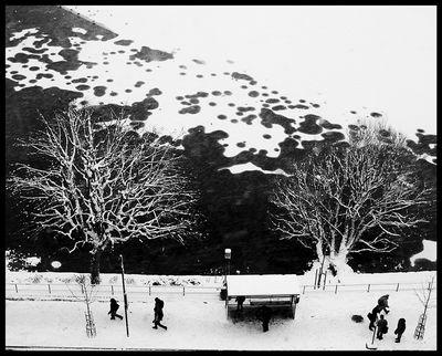 Winter Bus Stop