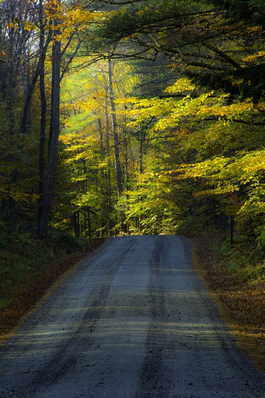 New Hampshire Back Woods: August Landscape Contest – Roads and Paths