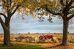 Farmall Tractor /Bump57/