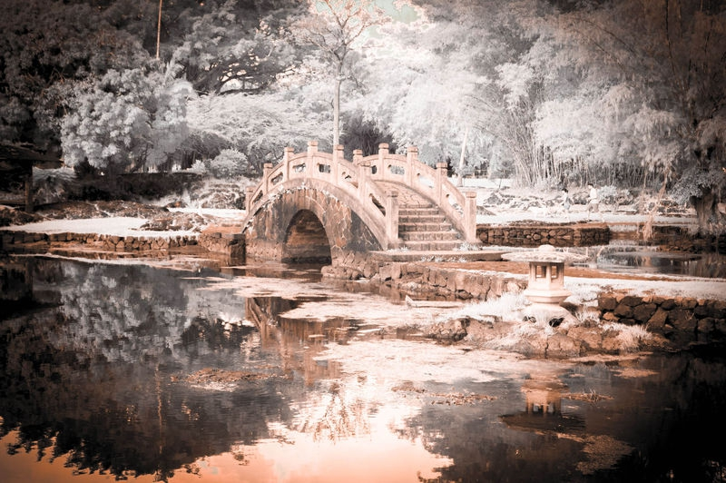 THE_BRIDGE_TO