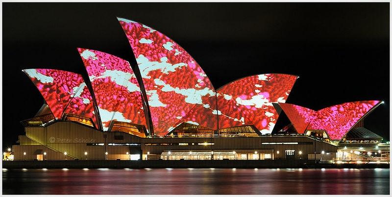 Luminous Sydney Opera House