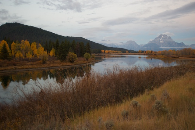 Oxbow Bend Turnout View