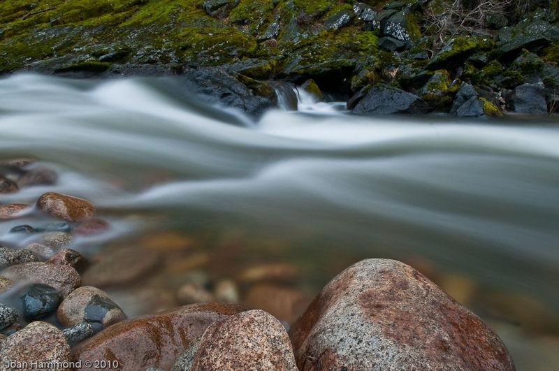 River Bank - Merced River I