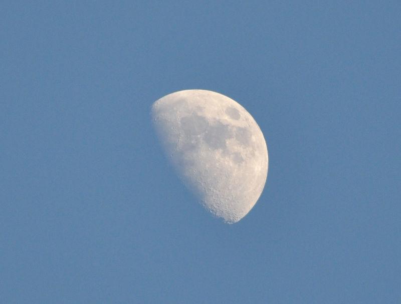 Moon near dusk