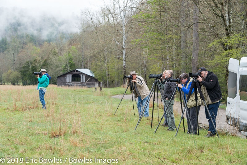 Shooting in Cataloochee Valley