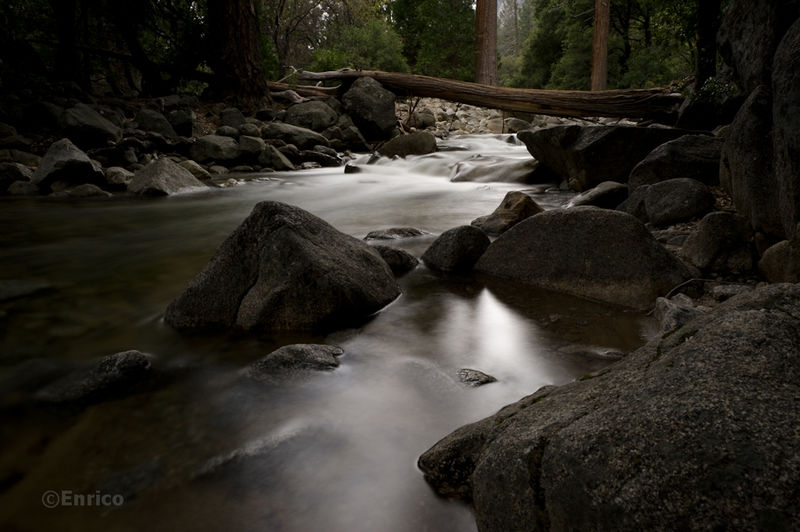 Enrico_Yosemite-291